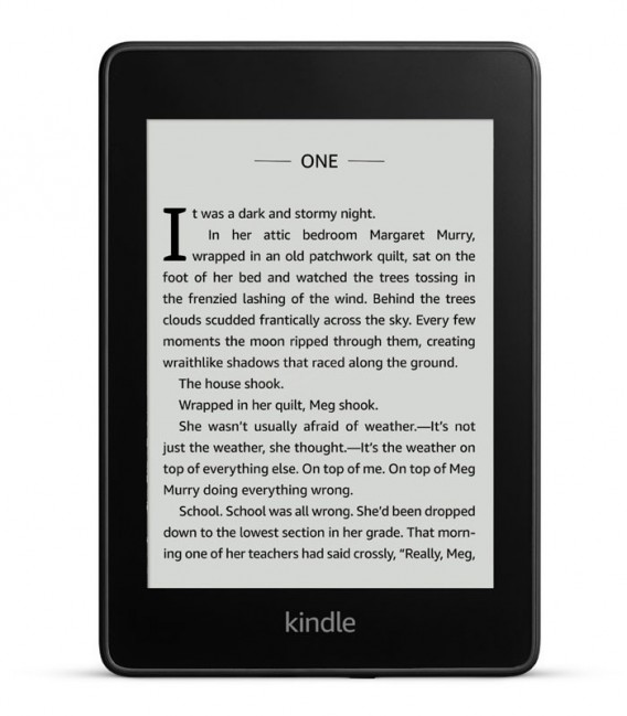 Amazon Kindle Paperwhite 4 32GB (2018) černý, bez reklam